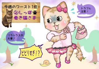 【猫さま占い】ラブ運下降の猫さまは? 7月8日~14日運勢ランキング