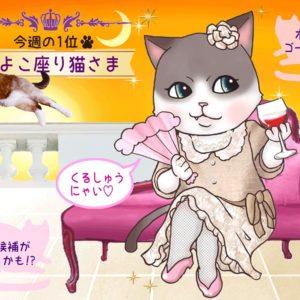 【猫さま占い】モテ期到来の猫さまは? 7月15日~21日運勢ランキング