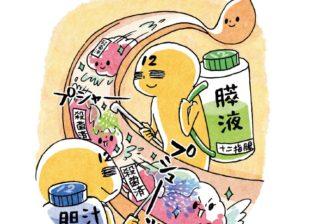 """「腸」は年中無休だから! 知っておきたい""""消化の流れ"""""""