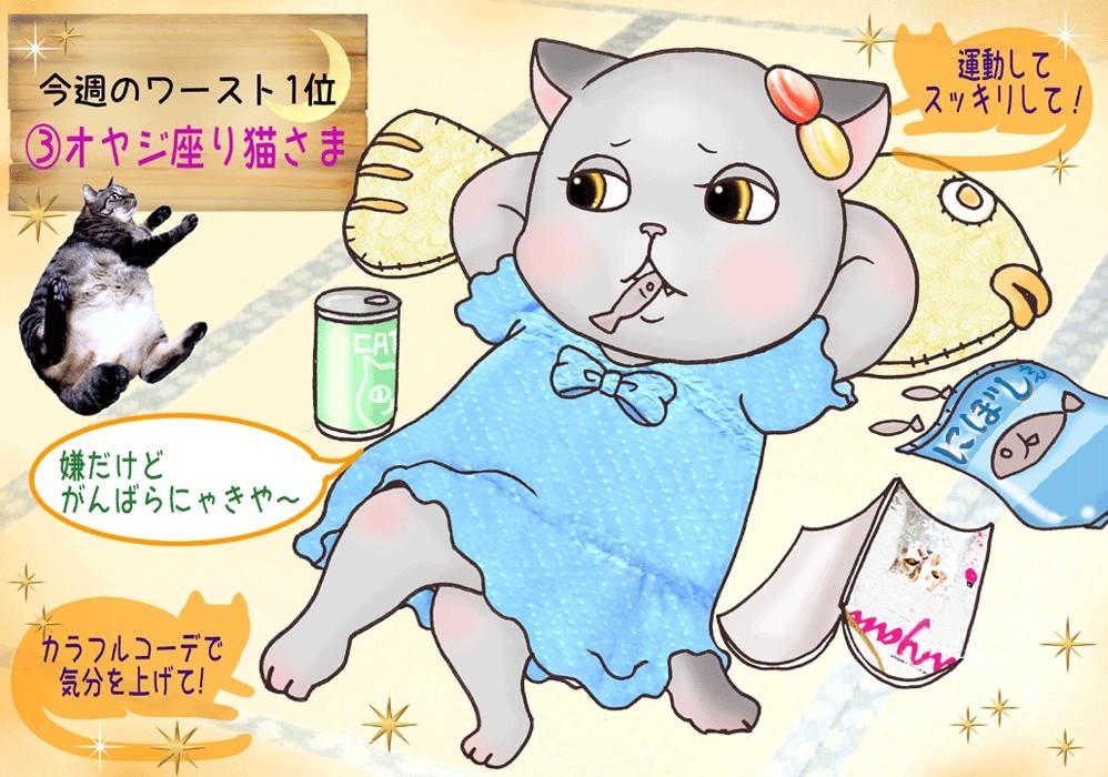 #7完成猫占い