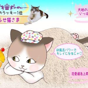 【猫さま占い】恋愛運上昇の猫さまは? 8月19日~25日運勢ランキング