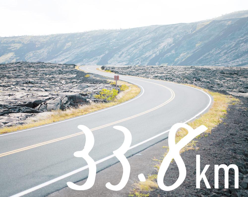 33.8km