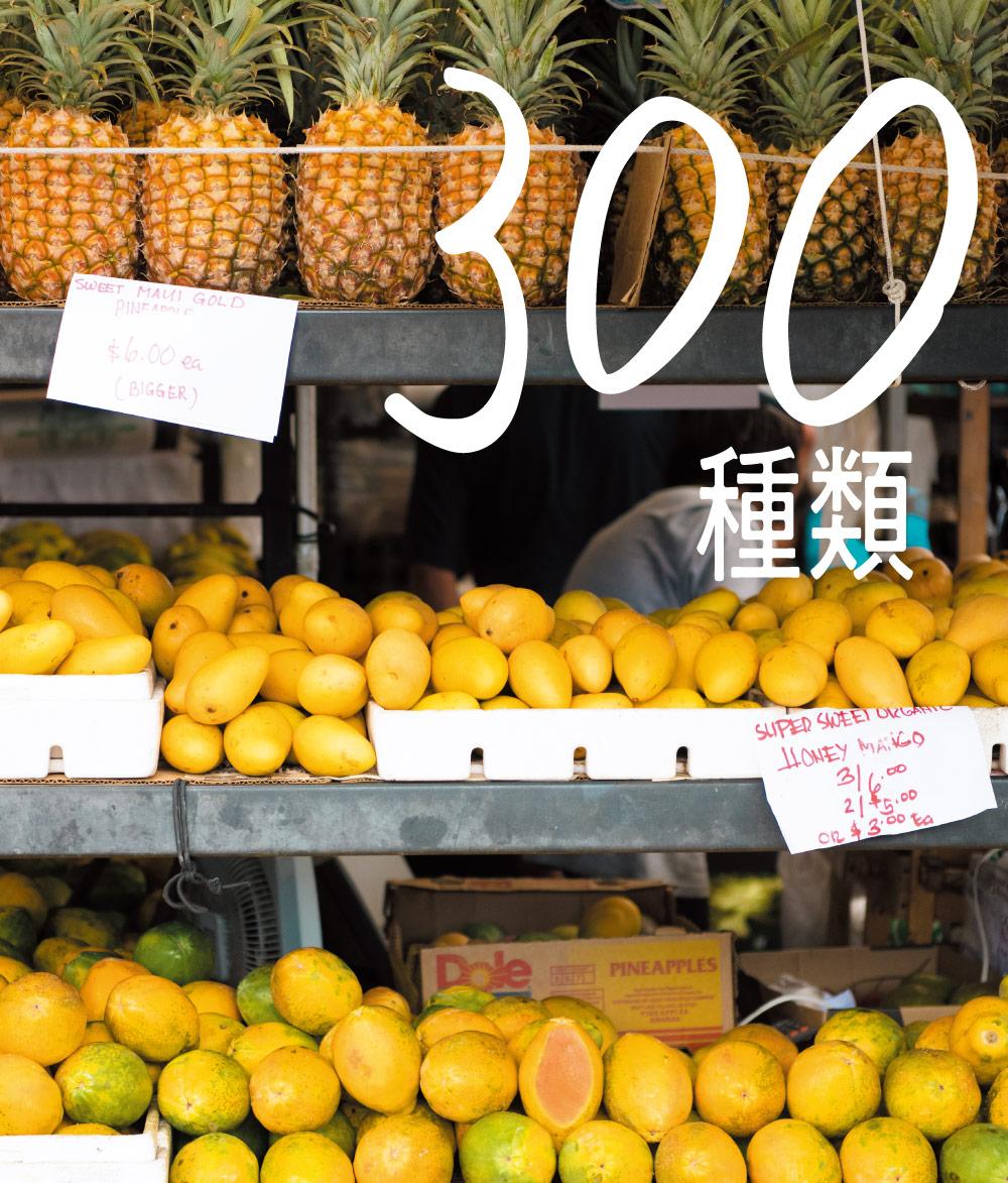 300種類