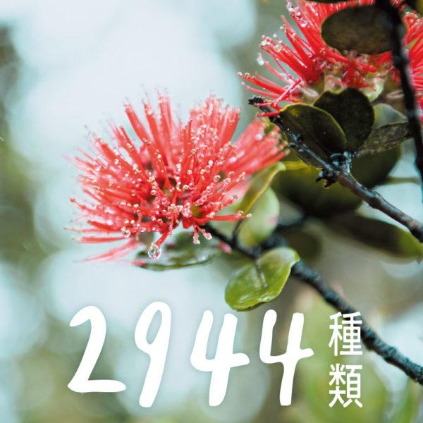 2944種類