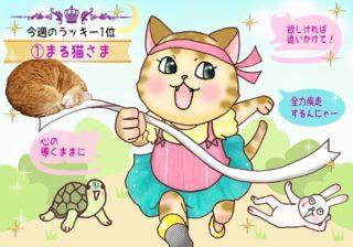 【猫さま占い】最強運の猫さまは? 9月2日~9月8日運勢ランキング