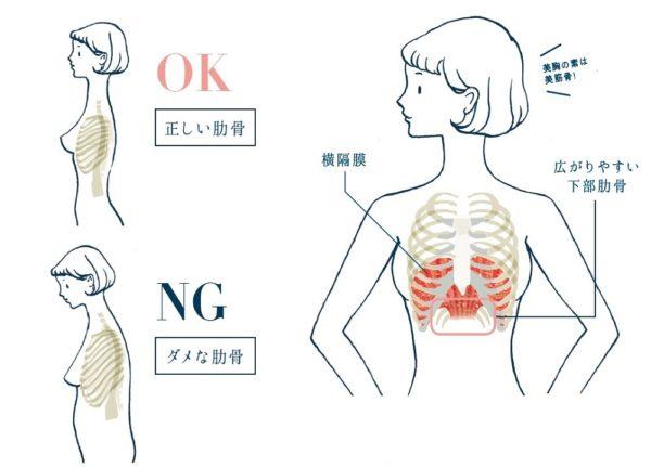 ナイトブラ 肋骨