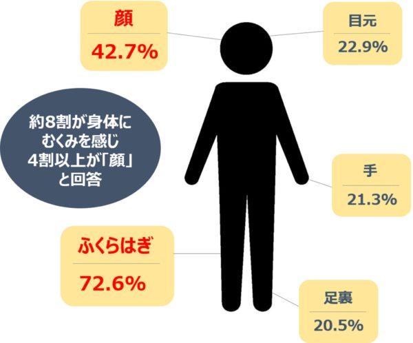 IPSAアンケート調査結果グラフ