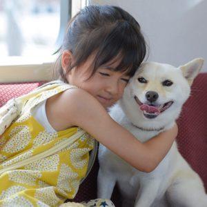 米津玄師「パプリカ」を歌う新津ちせ主演! 少女と愛犬の物語