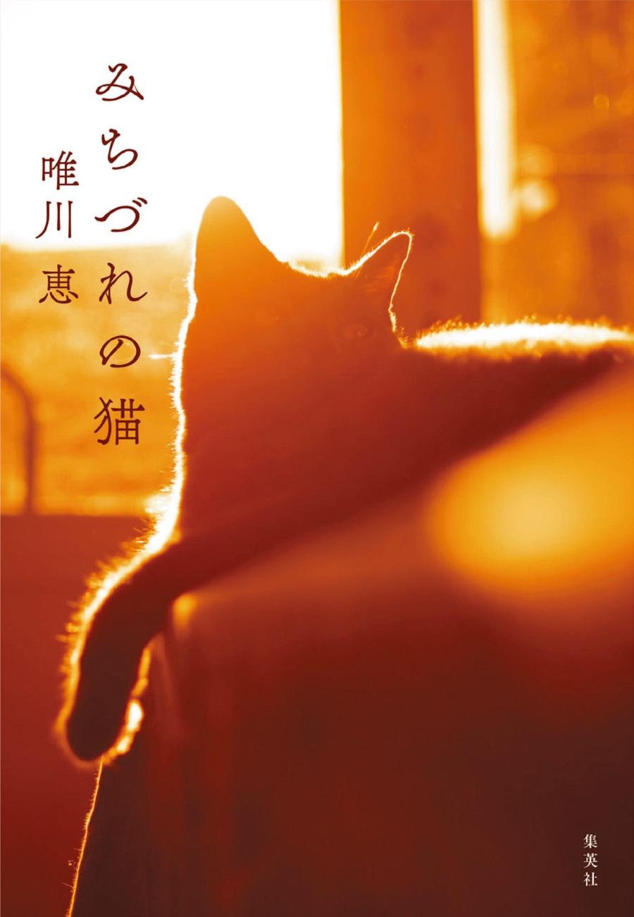 小説 子猫 官能