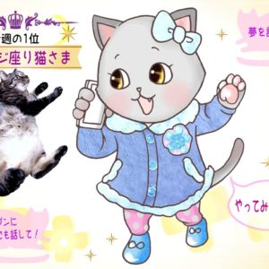 【猫さま占い】大幸運が訪れる猫さまは? 20日~26日運勢ランキング