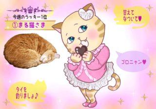 【猫さま占い】大幸運が訪れる猫さまは? 10日~16日運勢ランキング