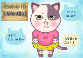 【猫さま占い】超ツイてない猫さまは? 2月24日~3月1日運勢ランキング