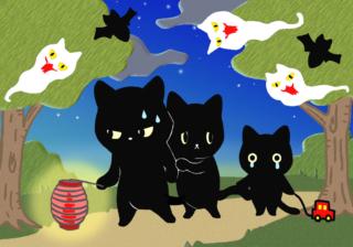 【黒猫心理テスト】あなたのブラック心理は? 今のストレス度がわかる!