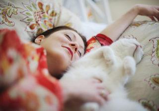 猫はアレが最高!…女性約200人に聞いた「最新ペット事情」