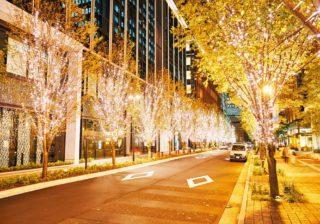 丸の内が「愛」「花」「星」モチーフのクリスマスツリーで華やぐ!