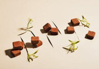 チョコを食べて作り手を支援 バレンタインに注目の4ブランド