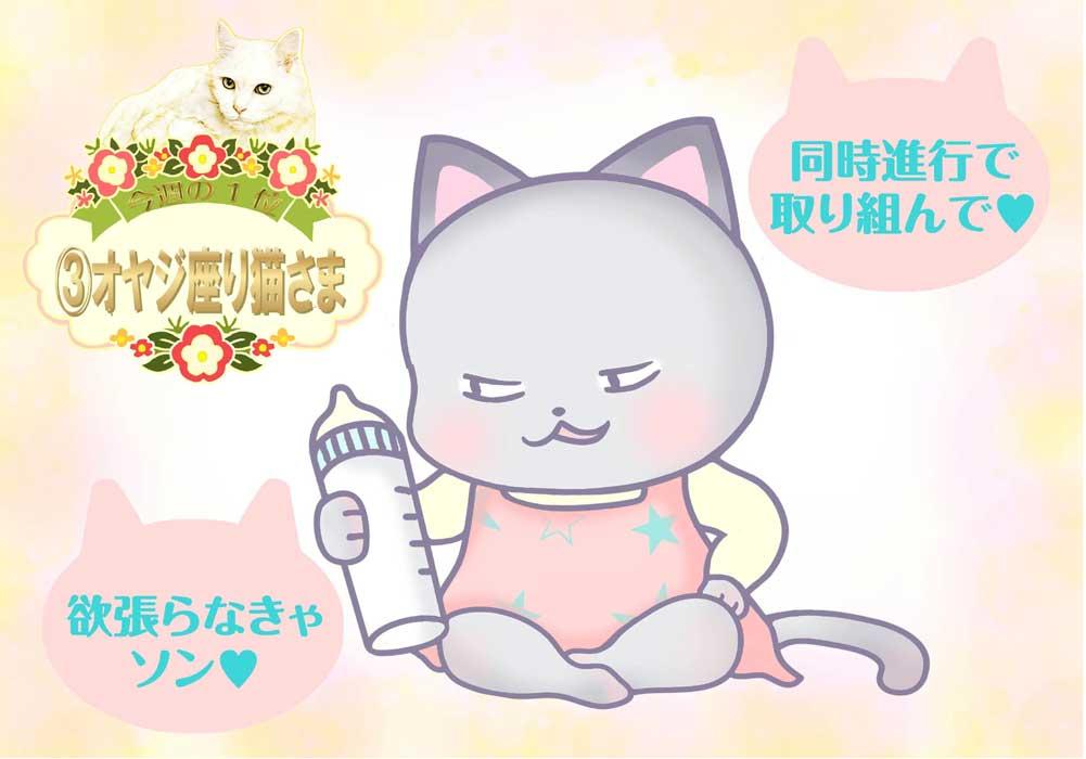 占い 2021年 2月 週間 猫さま占い 運勢 開運 恋愛運