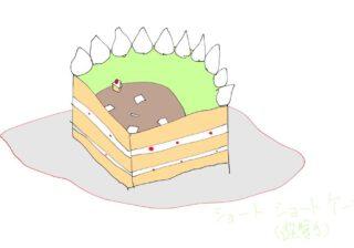 いいね4万超え!「ショートがショートケーキのケーキ」作者による作り方秘話