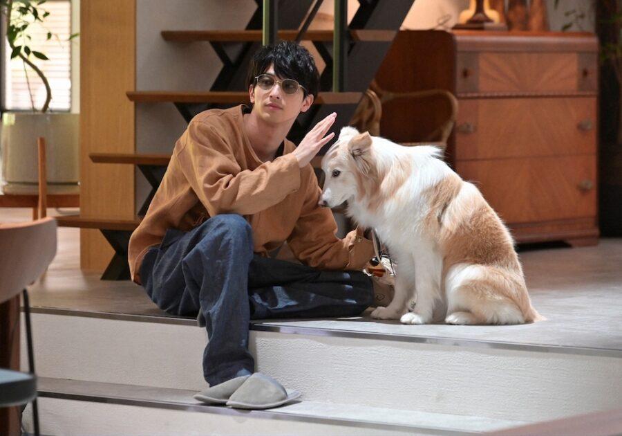 香子(夏川結衣)の飼い犬、こうじをよく散歩させている駿(横浜流星)。こうじかわいい!(2話より)©TBS