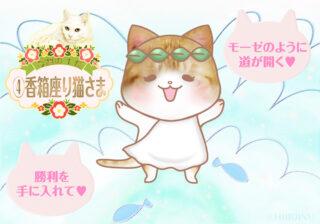 【猫さま占い】最強運になる猫さまは?  5月31日~6月6日運勢ランキング
