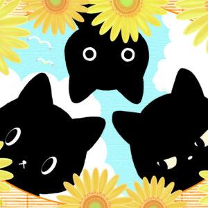 【黒猫心理テスト】大きな幸運を引き寄せる!「あなたに合った夏休みの過ごし方」