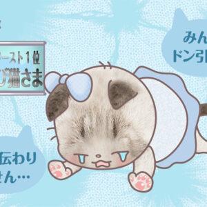 【猫さま占い】最強運を手にする猫さまは?  7月26日~8月1日運勢ランキング