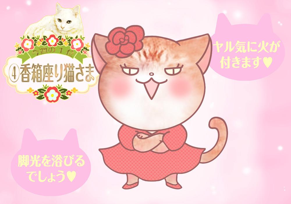 占い 2021年 猫さま占い 週間 運勢 開運 恋愛運