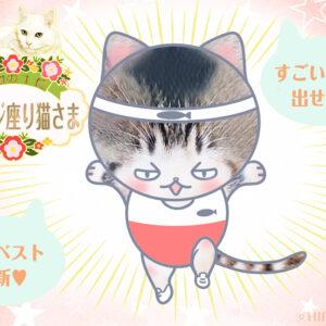 【猫さま占い】最強運を手にする猫さまは? 9月13日~9月19日運勢ランキング