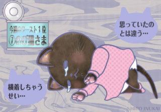 【猫さま占い】最強運を勝ち取る猫さまは? 10月18日~10月24日運勢ランキング