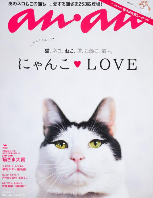 初の1冊丸ごと猫さま特集