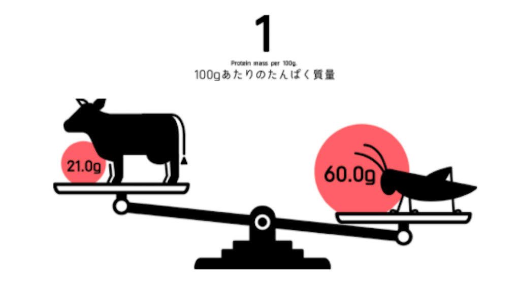 【INNOCECT】CRICKET PROTEIN(クリケットプロテイン) CHOCOLATE