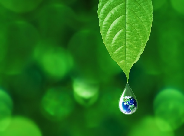 Earth,In,Water,Drop,Reflection,Under,Green,Leaf,,Water,And/メルヴィータ