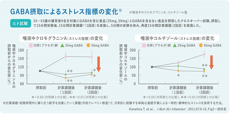 GABA研究レビュー2